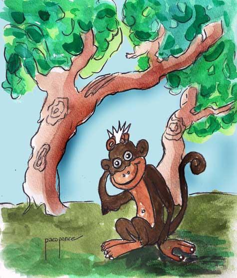Monos Dimba