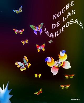 noches-mariposas