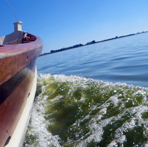 Barca albufera