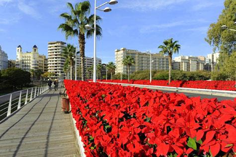 Puente de las Flores por Navidad.