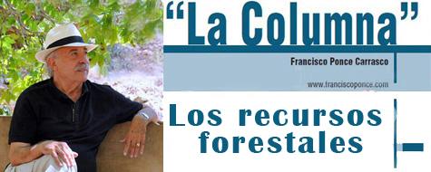 La Columna de Ponce (Prensa)