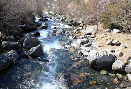 Río Esera a su paso por CERLER
