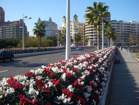 Valencia puente de las flores