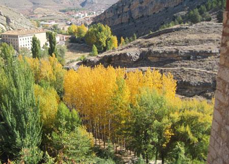 Valle de dorados chopos