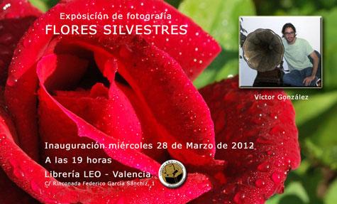 Exposición fotográfica de Víctor González