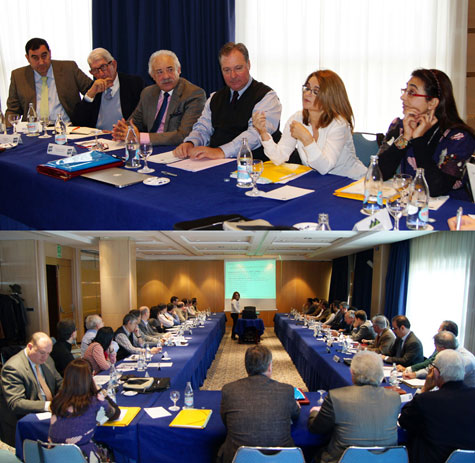 Reciente reunión de AEFA