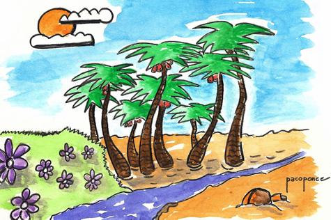 Palmeral de la isla